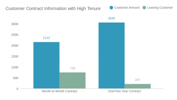 Customer Contract Information with High Tenure