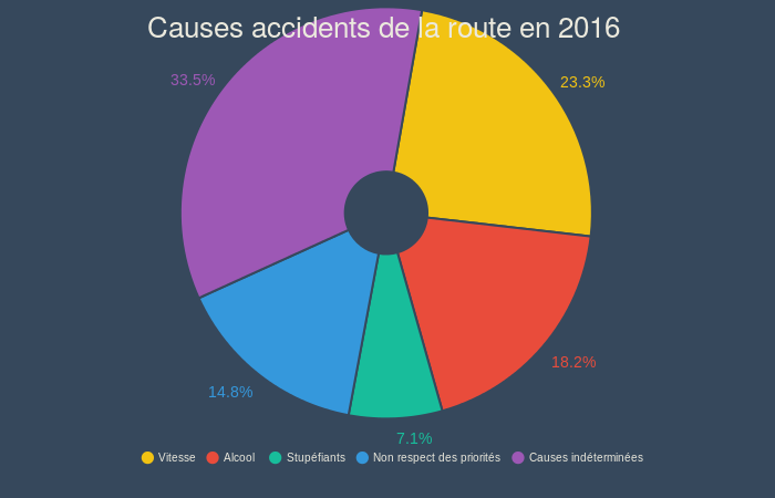 Causes accidents de la route (pie chart)