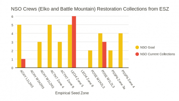 NSO Restoration Collections from ESZ