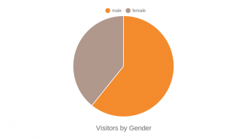 Visitors by Gender