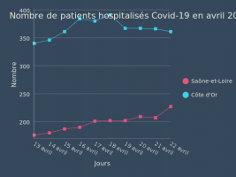 Nombre de patients hospitalisés Covid-19
